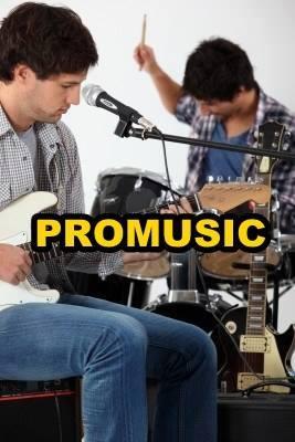 ACADEMIA DE MUSICA PRO-MUSIC