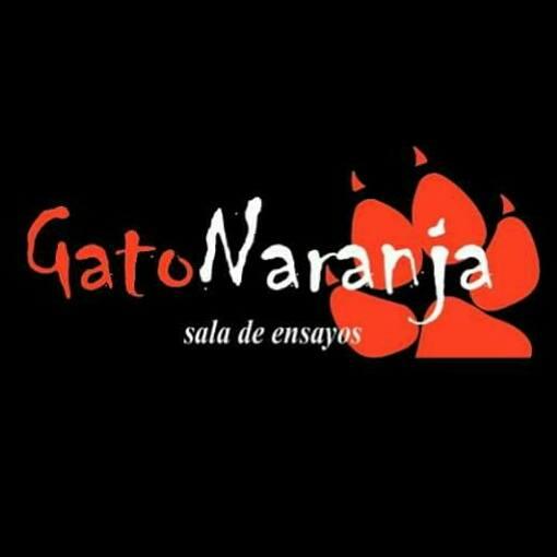 GatoNaranja